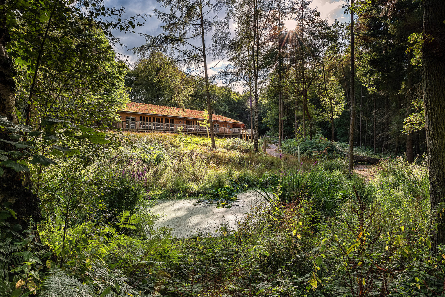 Wyre_Forest_Visitor_Centre.